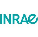 Logo Irstea