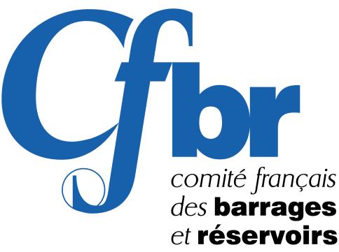 Logo CFBR